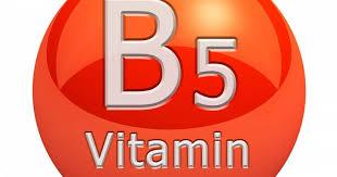 The ABCs of Vitamins: Vitamin B5 (Pantothenic Acid) | Breaking Muscle